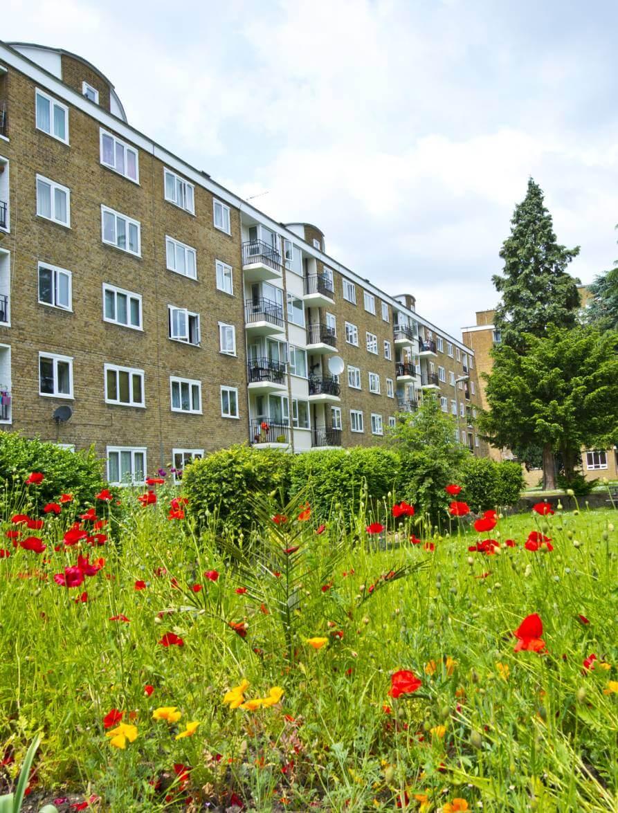 Db-social-housing